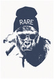 Harambe Hipster- Rare Póster