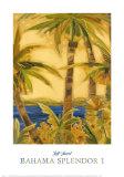 Bahama Splendor I