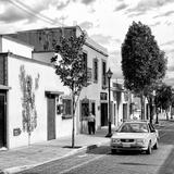 !Viva Mexico! Square Collection - Oaxaca Street II