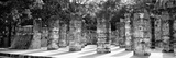 !Viva Mexico! Panoramic Collection - One Thousand Mayan Columns - Chichen Itza