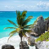 !Viva Mexico! Square Collection - Tulum Caribbean Coastline X