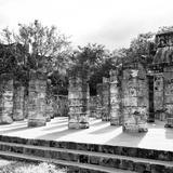 !Viva Mexico! Square Collection - One Thousand Mayan Columns in Chichen Itza V