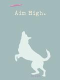 Aim High - Blue Version