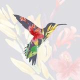 Grey Floral Hummingbird