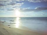 Sunshine Shores