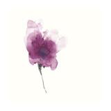 Expressive Blooms II