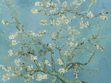 Almond Blossom, 1890