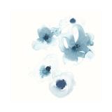 Protea Blue III