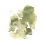 Foliose Gesture II