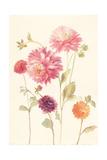 Watercolor Flowers VI