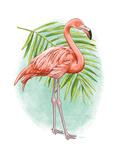 Tropical Flair II