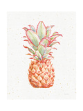 Gracefully Blush Pineapple XI