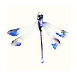 Blue & Violet Dragonfly