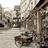Marais Bicycle