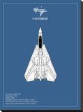 BP F-14-Tomcat