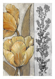 Ochre & Grey Tulips III