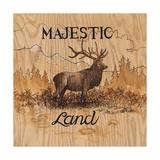 Majestic Land
