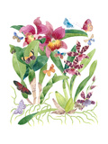 Butterflies and Orchids 2