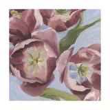 Mauve Tulips I