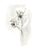 Neutral Floral Gesture VII