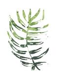 Emerald Tropics IV