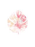 Pink Leaf II
