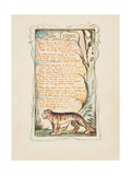 Songs of Innocence and of Experience: The Tyger, c.1825