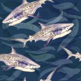 Tiger Shark Watercolor Pattern