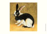 Black and White Bunny II