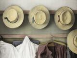 Amish Study No.18