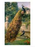 Peacocks in the Park, 1886