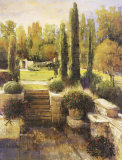 In the Cypress Garden