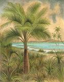 Island Palm IV