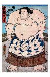 Sumo Yokozuna II