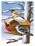 A Bluebird, Cardinal, and Finch Sitting by a Birdfeeder