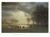 Buffalo Trail c.1867
