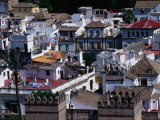 The Rooftops of Seville, Andalucia, Sevilla, Spain