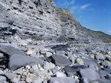 Fossil Bearing Lias Beds, Seven Rock Point, Jurassic Coast, Lyme Regis