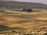Landscape in Autumn, Near Teruel, Aragon, Spain