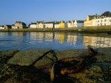 Le Quai Des Francais Libres, Ile De Sein, Breton Islands, Finistere, Brittany, France
