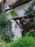 Cottage and Flowers, Wherwell, Hampshire, England, United Kingdom