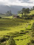 Punakha, Himalayas, Bhutan