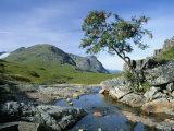 The Three Sisters of Glencoe, Highland Region, Scotland, United Kingdom