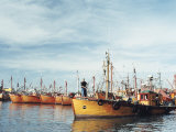 Fishing Fleet in Port, Mar Del Plata, Argentina, South America