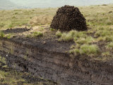 Peat Cutting, Connemara, County Galway, Connacht, Republic of Ireland