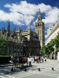 Seville, Andalucia (Andalusia), Spain