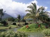 Tropical Plantation Garden, Maui, Hawaii, Hawaiian Islands, USA