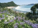 Hot Water Beach, Coromandel Peninsula, South Auckland, North Island, New Zealand