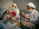 Cosmetics Factory, Guanzhou, Guangdong Province, China