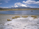 Volcan Parinacota on Right, Volcan Pomerape on Left, Volcanoes in the Lauca National Park, Chile